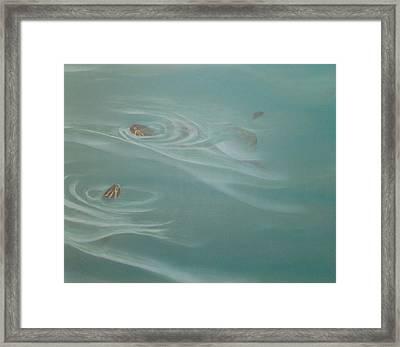 Turtle Pond II Framed Print
