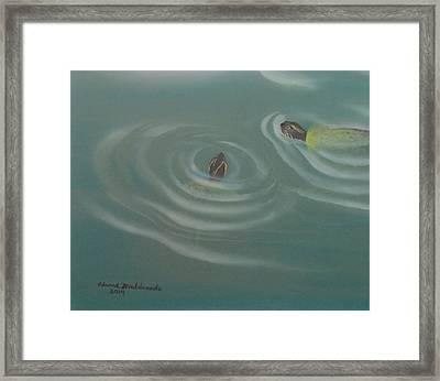 Turtle Pond IIi Framed Print