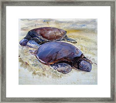 Turtle R And R Framed Print by Louise Peardon