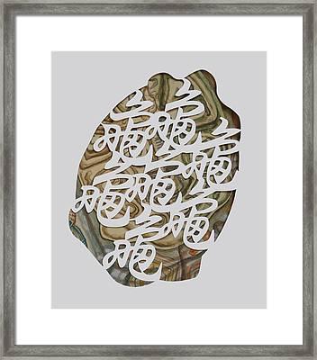 Turtle Shell's Inscription Framed Print