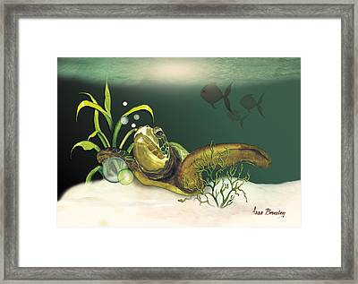 Turtle Swimming Over Reef Framed Print by Anne Beverley-Stamps