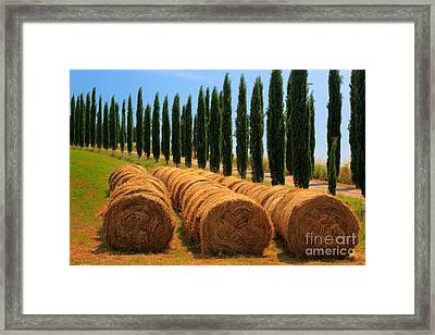 Tuscan Hay Framed Print by Inge Johnsson