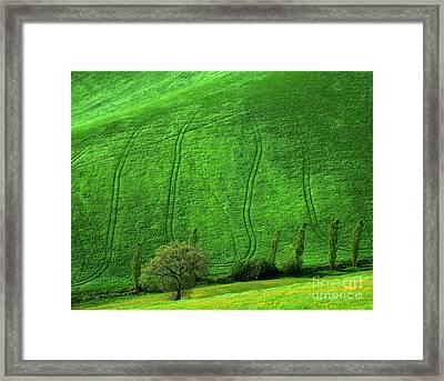 Tuscan Hills 05 Framed Print by Giorgio Darrigo