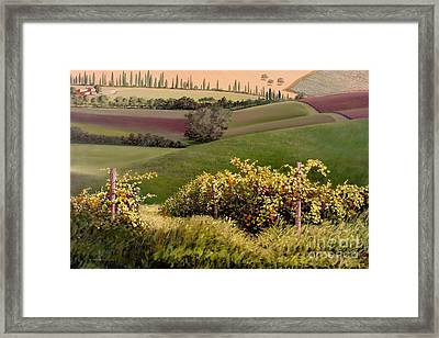 Tuscan Hills Framed Print by Michael Swanson
