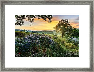Tuscan Landscape Framed Print by Yuri Santin