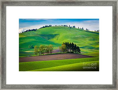 Tuscan Palouse Framed Print by Inge Johnsson