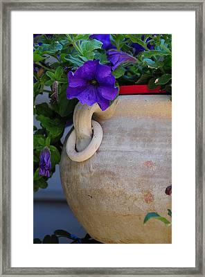 Tuscan Pot Framed Print