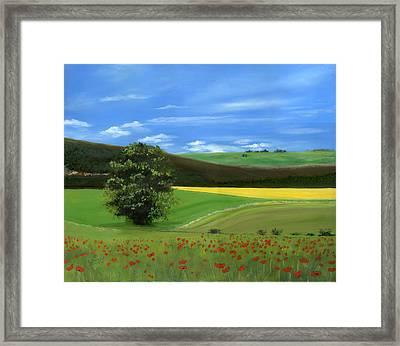 Tuscan Tree With Poppy Field Framed Print by Cecilia Brendel