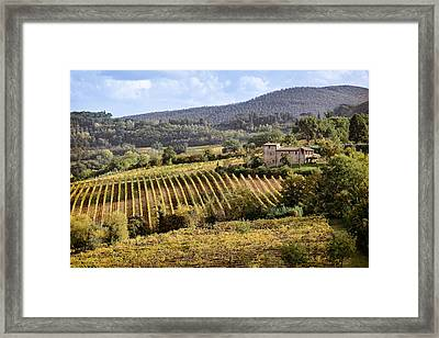 Tuscan Valley Framed Print by Dave Bowman