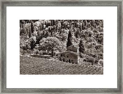 Tuscan Vinyard Framed Print