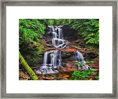 Tuscarora Falls In Spring- Ricketts Glen Framed Print by Nick Zelinsky