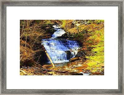 Tuscarora Framed Print by Patti Whitten