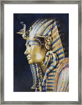 Tutankhamon Framed Print by Constance Drescher