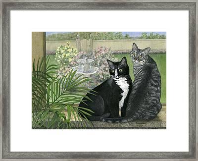Tuxedo And Tabby Framed Print