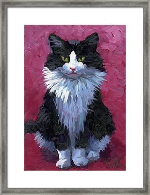Tuxedo Cat Framed Print by Alice Leggett