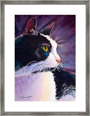 Tuxedo Cat Named Stormy Framed Print by Rachel Armington
