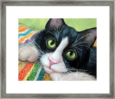 Tuxedo Cat With Blankie Framed Print by Dottie Dracos