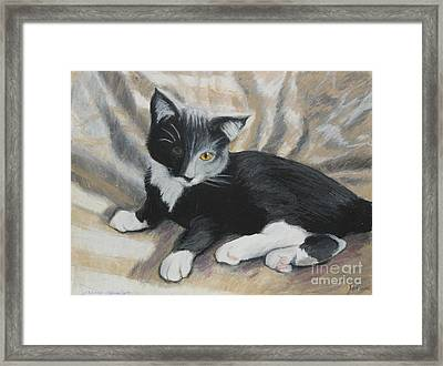 Framed Print featuring the painting Tuxedo Kitten by Jeanne Fischer