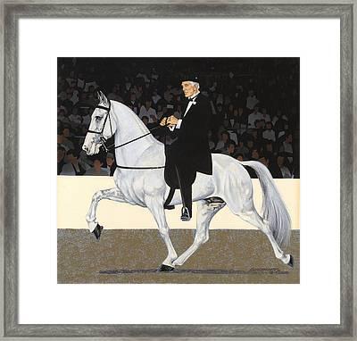 White Walking Horse In Show Framed Print