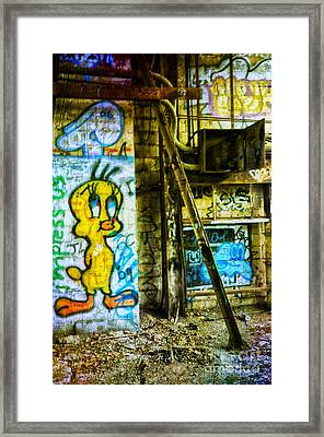 Framed Print featuring the photograph Tweety by Debra Fedchin