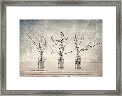 Twigs In Bottles Framed Print