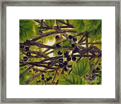 Framed Print featuring the painting Twigs Leaves And Wild Berries by Jingfen Hwu