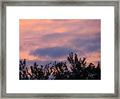 Twilight Beauty Framed Print by Sonali Gangane
