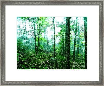 Twilight Forest Framed Print by Lorraine Heath
