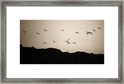 Twilight Geese Framed Print