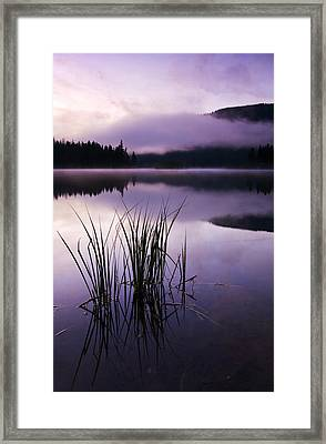 Twilight Glow Framed Print by Mike  Dawson
