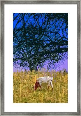 Twilight Grazing Framed Print