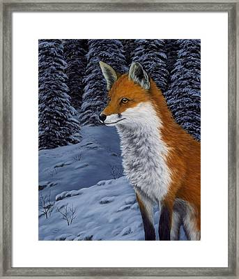 Twilight Hunter Framed Print by Rick Bainbridge