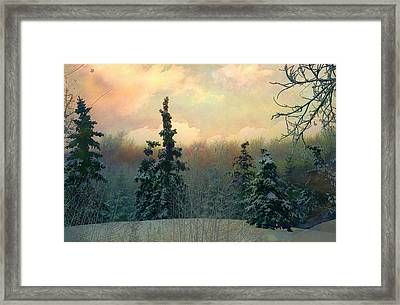 Twilight In The Forest Framed Print