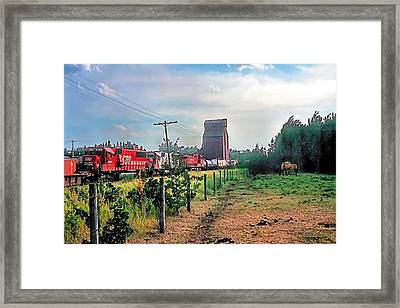 Twilight Pasture 2 Framed Print by Terry Reynoldson