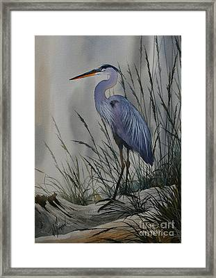 Twilight Shore Framed Print by James Williamson