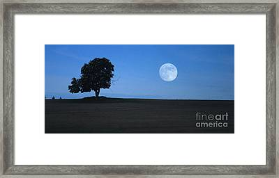 Twilight Solitude Framed Print by Sharon Elliott