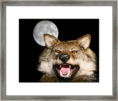 Twilight's Full Moon Framed Print by Patrick Witz