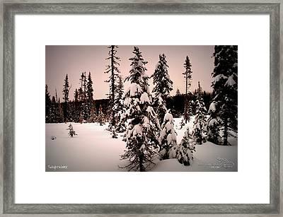 Twilightwinter Framed Print by Guy Hoffman