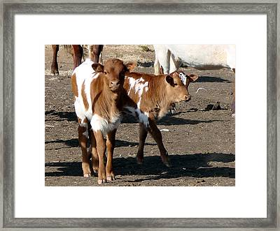 Framed Print featuring the photograph Twin Bad Boys by Linda Cox