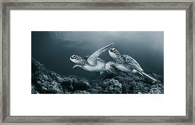Twin Dance Framed Print