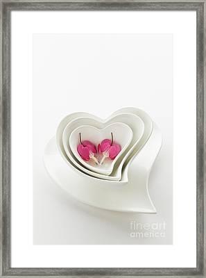 Twin Hearts 2 Framed Print