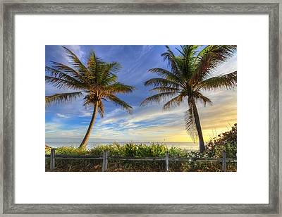 Twin Palms Framed Print by Debra and Dave Vanderlaan