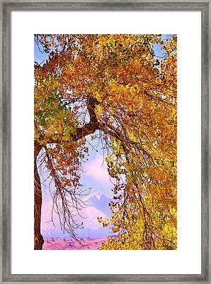 Twin Peaks - Longs Peak And Mt  Meeker Colorful Autumn View Framed Print