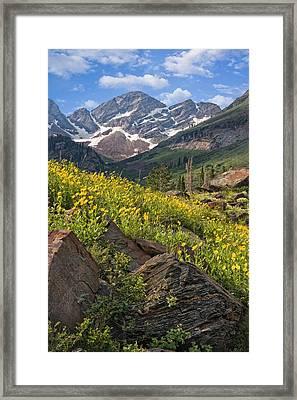 Twin Peaks Wilderness Utah Framed Print by Utah Images