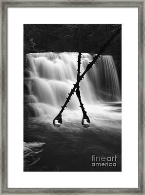 Twin Reflections Framed Print by Dan Friend