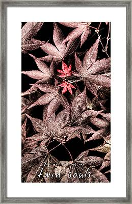 Twin Souls Valentine 2 Framed Print by Weston Westmoreland