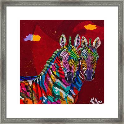 Twin Zebras Framed Print by Tracy Miller