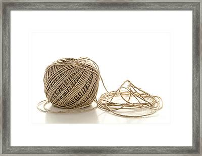 Twine Framed Print by Olivier Le Queinec