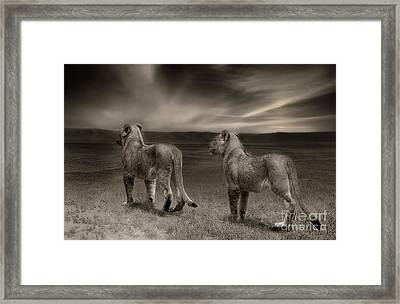 Framed Print featuring the photograph Twins 2 by Christine Sponchia