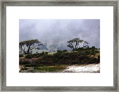 Framed Print featuring the photograph Twins In  The Fog by Gary Brandes